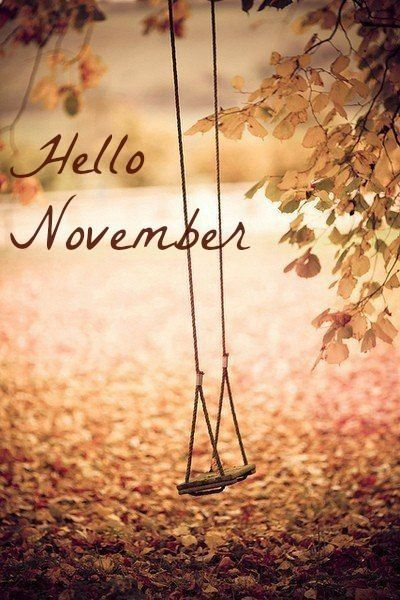 What's Coming Up – November